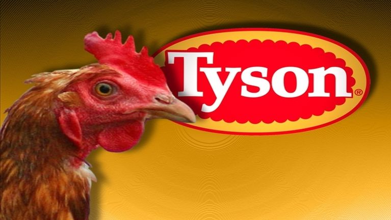 USA, Tennessee Tyson Foods ah zuakding ak aki khawina ah Bird flu kimu ~ ZD