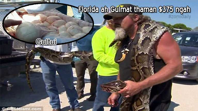 Florida Everglades ah gulpi lianmahmah khat kiman in gulmat thaman $375 ngah