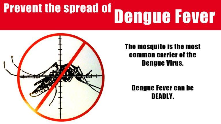 Myanmar, Rakhine State sungah Dengue Fever angah mi 1400 pha, mi 16 sikhin